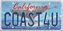 Whale Tail Personalized License Plate